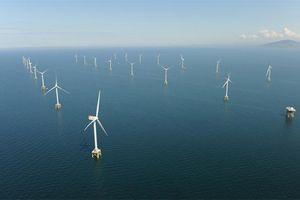 Siêu dự án điện gió Thanglong Wind trị giá 12 tỷ USD được cấp giấy phép khảo sát