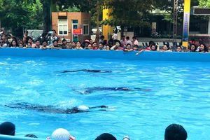 Phát động toàn dân tập luyện môn bơi, phòng chống đuối nước 2019