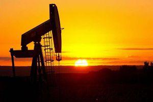Giá dầu thô lao dốc, kéo chứng khoán giảm theo