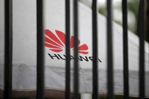 Chủ tịch Hội đồng kinh doanh Mỹ - Trung: Ông Trump muốn 'giết' Huawei