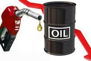 Giá dầu hôm nay 14.6: Giá dầu tiếp tục đà giảm