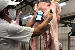 Nhập khẩu thịt tăng 6,7 lần: Không quản, Việt Nam thành bãi rác thịt nhập
