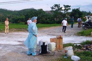 Quảng Bình xuất hiện bệnh dịch tả lợn Châu Phi