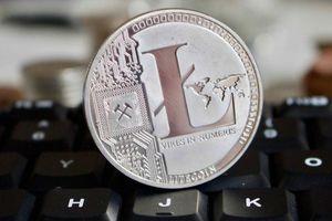 Ai dùng đồng mã hóa tăng giá hơn 330% kể từ đầu năm?
