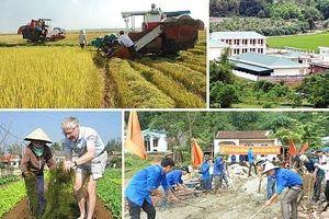 Khẩn trương rà soát, thống nhất Bộ tiêu chí xã nông thôn mới kiểu mẫu