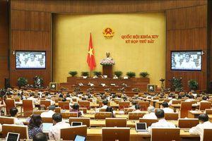 Kỳ họp thứ 7, Quốc hội khóa XIV: Thông qua Luật Phòng, chống tác hại của rượu, bia