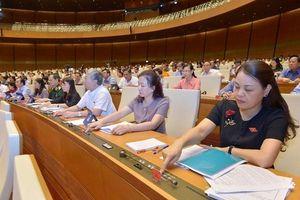 Thông qua Luật Giáo dục (sửa đổi), Quốc hội quyết 1 chương trình nhiều sách giáo khoa