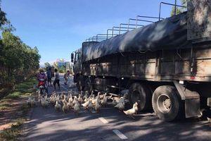 Công an Quảng Bình bác thông tin người dân 'hôi của' khi xe tải bị lật