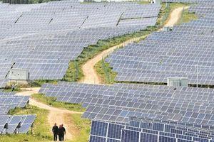 Sự sẵn sàng của dòng vốn cho ngành năng lượng tái tạo