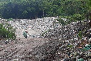 Phú Quốc: Người dân chặt cây ngăn đường chặn xe vào bãi rác tạm vì ô nhiễm