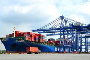 Ông Bùi Thiên Thu, Cục phó Cục HHVN: 'Cần tăng nguồn vốn tư nhân để phát triển cảng biển'