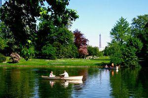 Pháp lên kế hoạch phủ xanh thủ đô Paris