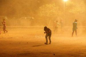 Thêm 13 người dân ở Ấn Độ chết vì bão bụi