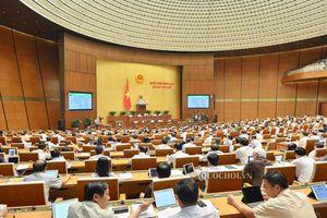 Ngày làm việc thứ mười chín, Kỳ họp thứ 7, Quốc hội khóa XIV: Thông qua Luật Quản lý thuế, Luật Đầu tư công và Luật Kiến trúc