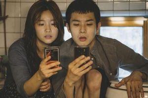 'Ký sinh trùng'- Bộ phim Hàn Quốc giành giải Cành cọ vàng lập kỷ lục doanh thu mở màn tại Pháp