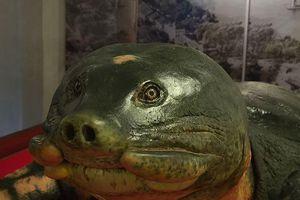 Chuyện chưa kể về chế tác cụ rùa Hồ Gươm cuối cùng