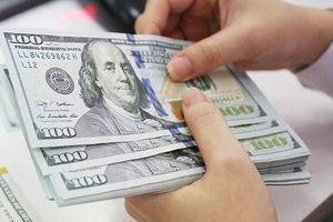 Tỷ giá ngoại tệ 15.6: USD tự do nhích nhẹ, Euro giảm sâu