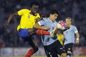 Nhận định Uruguay - Ecuador: Luis Suarez và cuộc dạo mát ở Mineirao