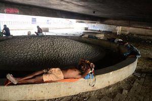Ít nhất 36 người chết vì nắng nóng kỷ lục ở Ấn Độ