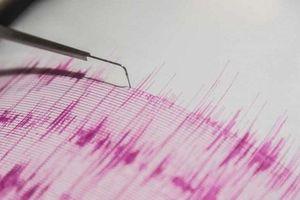 New Zealand chấn động vì động đất 7,4 độ, cảnh báo sóng thần