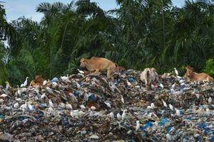 Đến lượt Indonesia trả rác thải