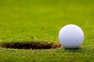 Clip: Những điều cần lưu ý khi tìm bóng trên sân Golf