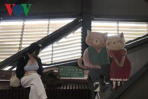 Chân đi không mỏi ở làng mèo siêu đáng yêu của Đài Bắc
