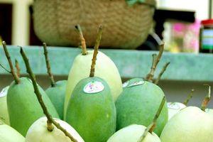 Sáu loại quả tươi của Việt Nam đã xuất khẩu sang Mỹ