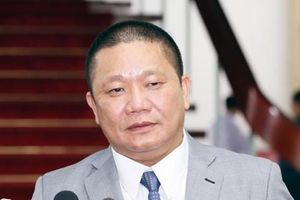 Tôn Hoa Sen giải thể công ty con sau khi đóng cửa hàng trăm chi nhánh