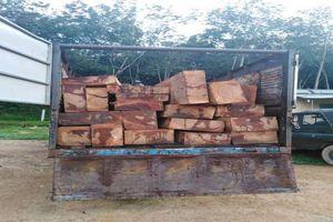 Đục khoét số khung, số máy xe tải để chở gỗ lậu
