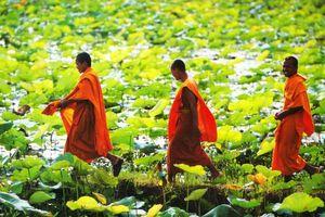Đến đất Phật có nên cho tiền trẻ em ở đó?