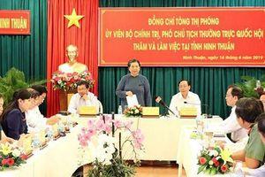 Ninh Thuận đề xuất cơ chế đầu tư dự án điện mặt trời