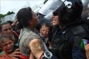 Mexico bắt giữ 791 người di cư bất hợp pháp
