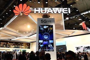 Huawei hạ dự báo doanh thu xuống 100 tỷ USD