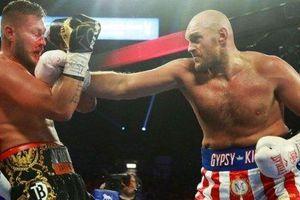'Gã hề' Tyson Fury hạ gục tay đấm bất bại người Đức trong 2 hiệp