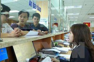 Doanh nghiệp và FTA - Bài 4: Hỗ trợ tối đa việc cấp C/O cho doanh nghiệp