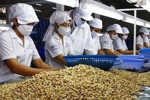 Bờ Biển Ngà - Đối tác thương mại lớn thứ hai của Việt Nam tại châu Phi