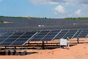 Nhà máy điện mặt trời Phước Hữu - Điện lực 1 chính thức đi vào hoạt động