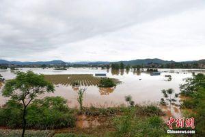 Mưa lũ làm 88 người thiệt mạng ở khu vực miền Nam Trung Quốc
