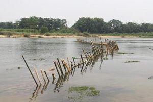 Người dân tháo dỡ 'trận địa' cọc tre ngăn cát tặc trên sông Bồ