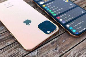 iPhone sẽ có màn hình 'khổng lồ', hỗ trợ 5G vào năm 2020
