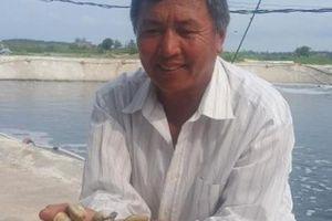 Làm giàu ở nông thôn: Xây ao nổi cho ngao đẻ, có tiền tỷ mỗi năm