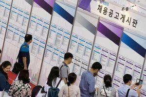 Hàn Quốc: Chương trình trợ cấp 'sống vì đam mê' cho người thất nghiệp