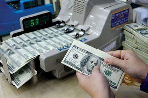 Ngân hàng nâng giá USD trung tâm trở lại