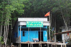 Chuyển cơ quan điều tra sai phạm tại Vườn Quốc gia Mũi Cà Mau