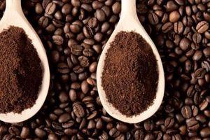 Dự báo giá cà phê tuần từ 17-22/6