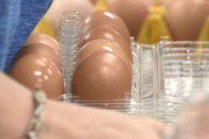 Ăn vụng 2 quả trứng giá 13 nghìn, nhân viên siêu thị bị phạt 3 tháng tù và 66 triệu đồng