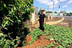 Gia Lai: Hệ thống thoát nước dự án làm hư hại nhà dân