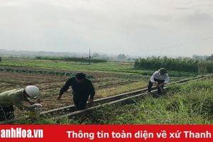 Huyện Hà Trung xây dựng môi trường xanh - sạch - đẹp và đảm bảo vệ sinh an toàn thực phẩm