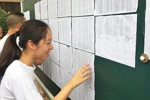 Nhiều điểm 10 trong kỳ thi vào lớp 10 công lập ở Hải Phòng